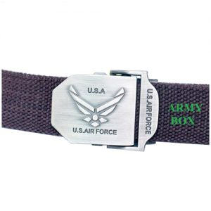 That lung US Air Force